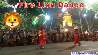 Fire Lion Dance | अग्नि सिंह नृत्य | Múa sư tử phun lửa | Танец Огненного Льва | 獅子舞 | 火狮舞
