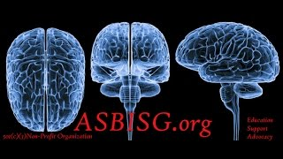 Our Website Update - ASBISG.org Tuesday Brain Injury Support Conference Call