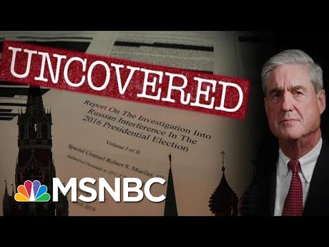 Uncovered: What The Mueller Report Tells Us About Trump And Dangled Pardons | The 11th Hour | MSNBC