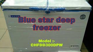 Blue star deep freezer/300liter deep freezer