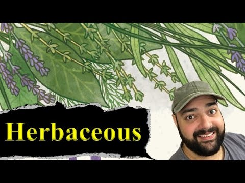 Herbaceous Review - with Zee Garcia