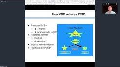 How CBD relieves PTSD