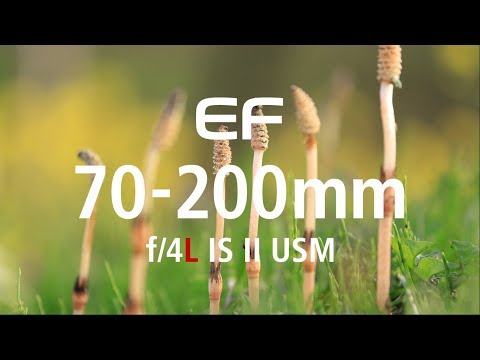 """EF70-200mm F/4L IS II USM """"Small But Powerful"""" (CanonOfficial)"""