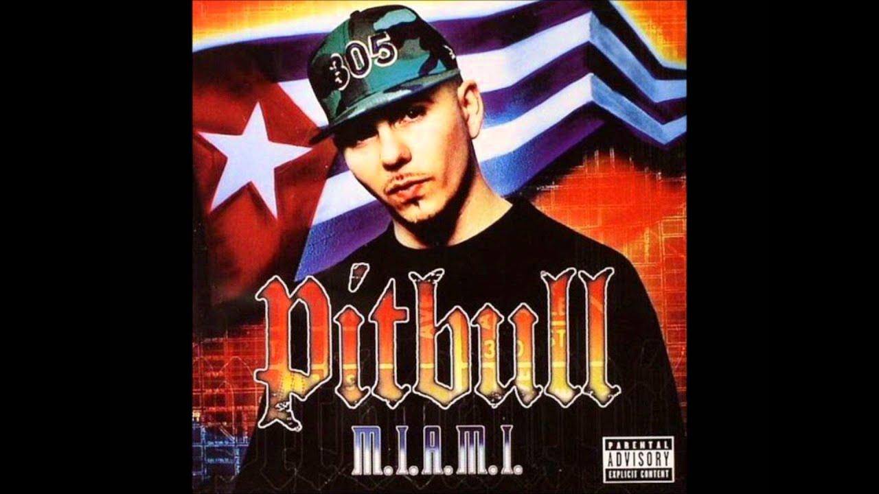 pitbull feat.piccallo-dammit man