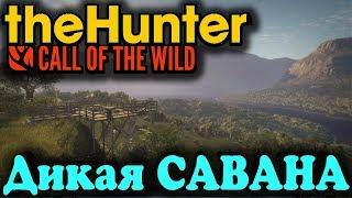 САВАНА новый биом - TheHunter Call of the Wild