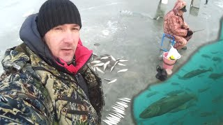 ОГРОМНЫЙ КОСЯК РЫБЫ ПОД НОГАМИ РЫБА АТАКУЕТ Зимняя рыбалка на КОМБАЙНЫ и САМОДУР
