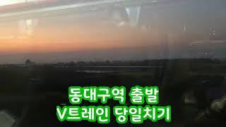 [V트레인] 동대구출발 당일치기