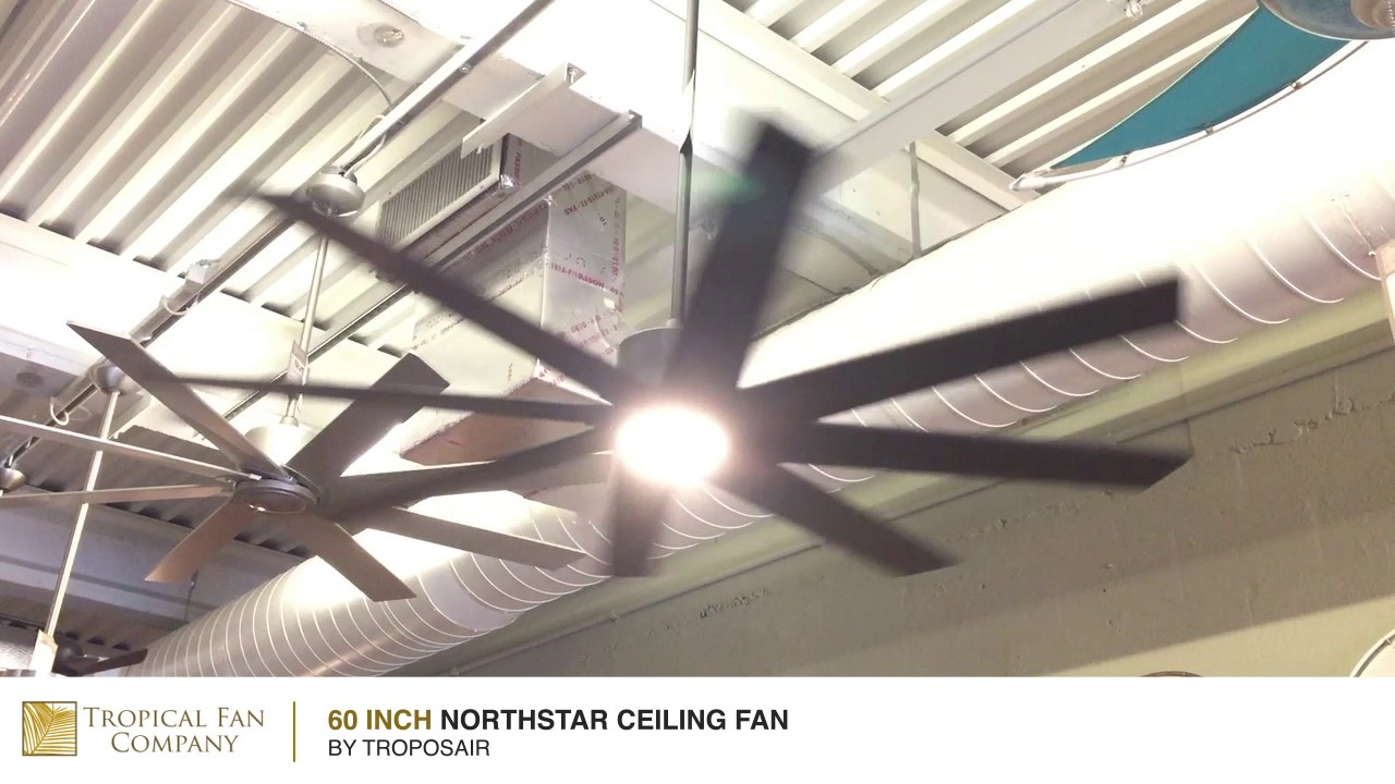 ceiling commercial titan troposair lowes at sparkley crammed fan shop inch large on charming com fans picturesque