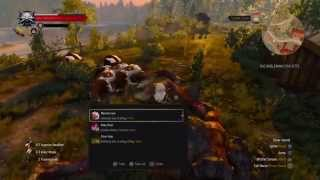 The Witcher 3: Wild Hunt farm unlimited item and money  = KILL COWS