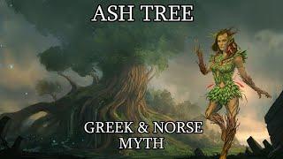 Dryads of the Ash Tree: Origin of Man