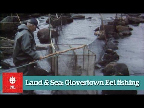 Land & Sea - Eel Fishing near Glovertown - Full Episide