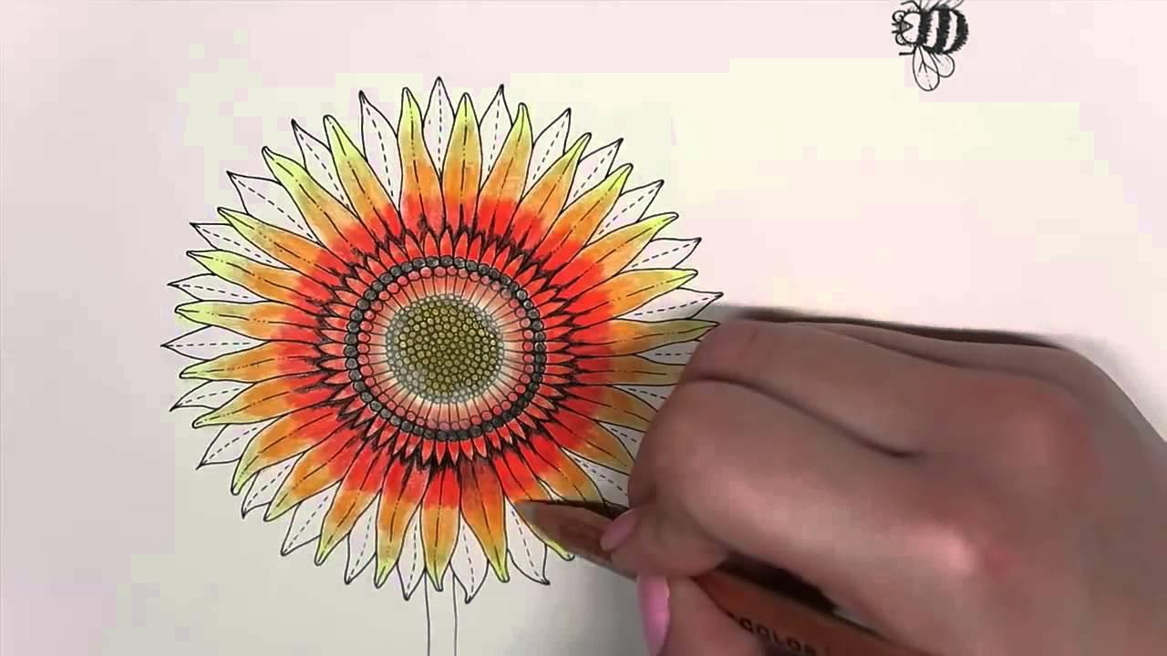 Secret Garden Coloring Book | Sunflower - YouTube