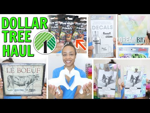 DOLLAR TREE HAUL! NEW BRAND NAMES HOME DECOR AND MORE!