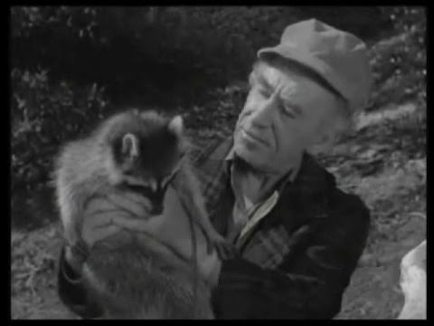 """Download Lassie - Episode #213 - """"The Chase"""" - Season 6 Ep. 31 - 04/10/1960"""