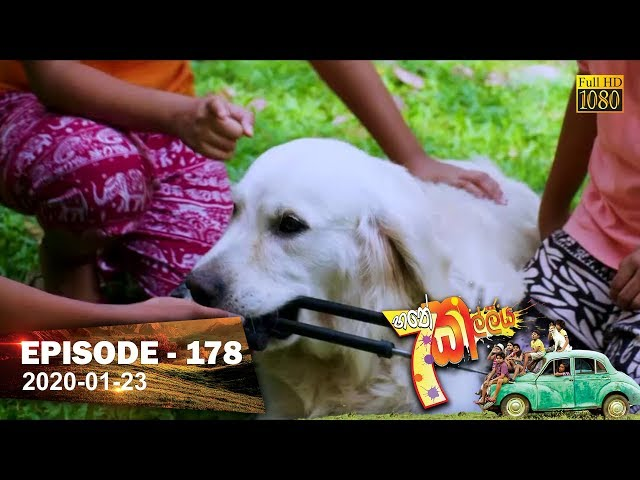 Hathe Kalliya | Episode 178 | 2020- 01- 23