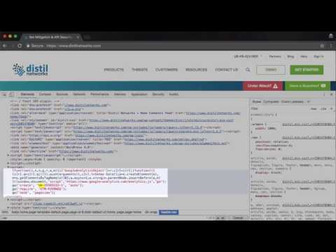 Troubleshooting Your Distil Bot Discovery Tag