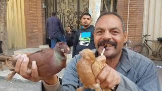 سوق الحمام من المحله الكبري الجزء4 الصحبه الحلوه #جمهورية_المحله Egyptian pigeon's market 2018