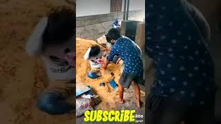 Very Funny Stupid Boys 2020 | Best Comedy Video 2020 | Try Not To Laugh | Episode 7