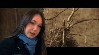 Természetfilmezés kulisszatitkai 2. rész