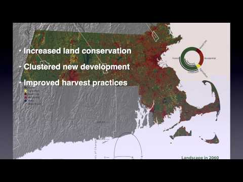 Harvard Forest Changes to the Land preview