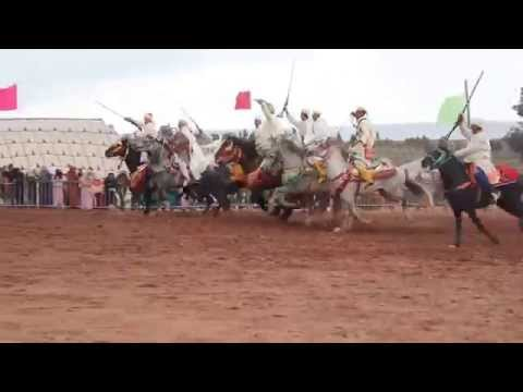 Moroccan Fantasia (horse race) Spectacle Full HD