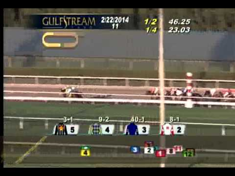 Gulfstream Park: Race 11 The Fountain of Youth G2  February 22, 2014