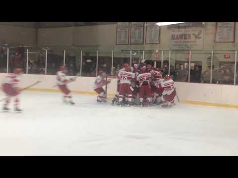 VIDEO: Waltham High boys hockey team celebrates upset of Central Catholic