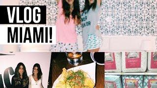Vlog Miami, 2 dia - Piscina do hotel, Target e +