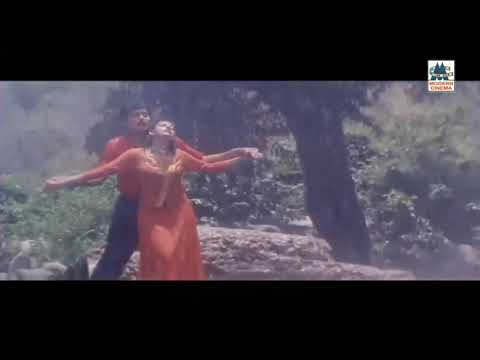 Thenmerku paruvakatru video cut song - Karuthamma movie
