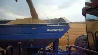 Saskatchewan Harvest 2011