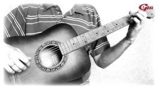 В мире животных. На гитаре. Урок 4