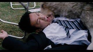 4,000万頭の怒れる殺人羊…映画『ブラックシープ』予告編