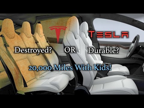Tesla White Seats: Durable or Destroyed? 20,000 miles with kids! - 동영상