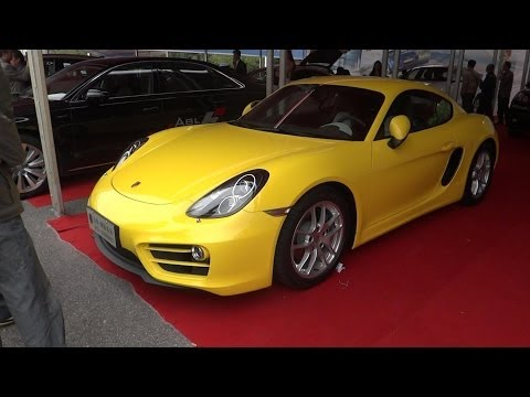 A Visit Local Car Exhibition of Zhuzhou City