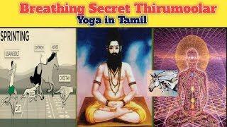 Breathing | Horse Power | Thirumoolar | 12 கால் ரகசியம் | Yoga in Tamil......