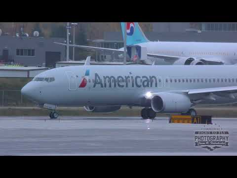 American Airlines Boeing 737 Missed Approach, Landing, and Takeoff - Paine Field