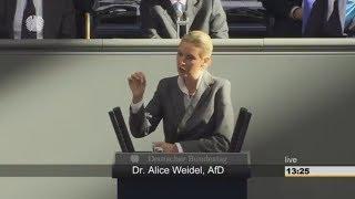 SCHARFE KRITIK: Alice Weidel fordert Rechte von der EU zurück