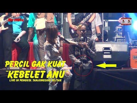 Percil Gak Kuat Pingin Anu gara gara dipegang Wenzhu ~ Live In Pengkol Tanjungsari Blitar