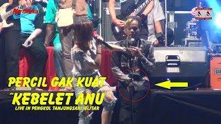 Download Video Percil Gak Kuat Pingin Anu gara gara dipegang Wenzhu ~ Live In Pengkol Tanjungsari Blitar MP3 3GP MP4
