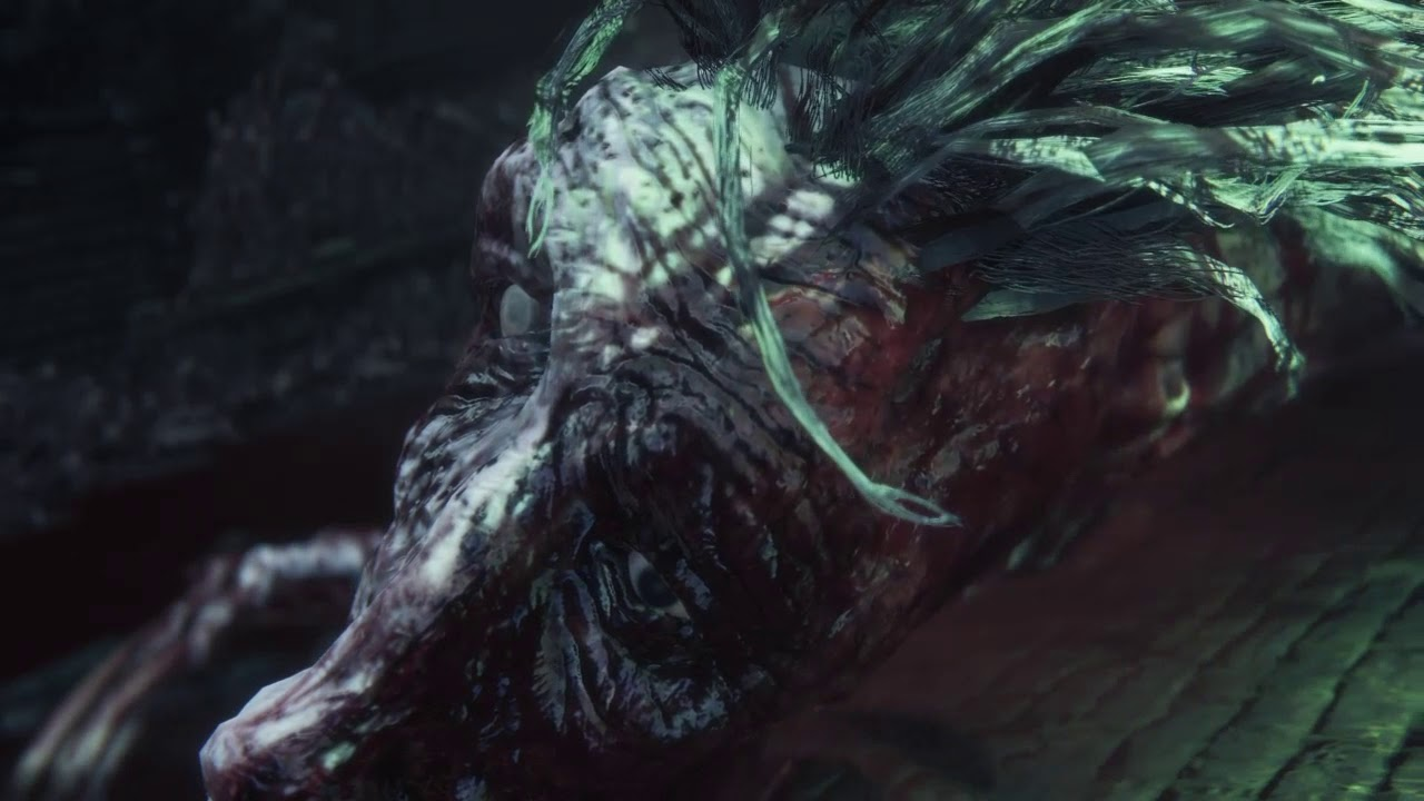 Bloodborne Ludwig the accursed / holy blade boss battle