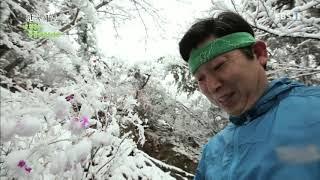 한국기행 - Korea travel_내 친구는 동물이로소이다 1부 당나귀 산타다_#001