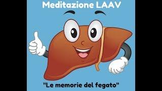"""Meditazione LAAV """"Le memorie del fegato"""""""
