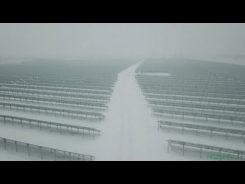 Central Asia's largest solar power plant opens in Kazakhstan