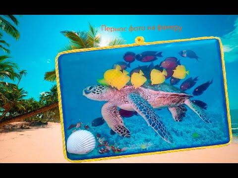 перенос фото на фанеру (морская черепаха)