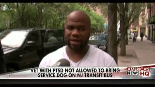 Army Vet Not Allowed To Bring Service Dog On Bus Veteran Was Denied A Ride On New Jersey Transit Bus