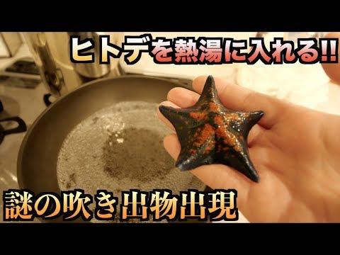 ヒトデを熱湯で茹でたら'謎の吹き出物'が出てきた!!