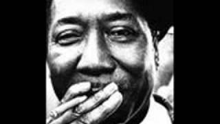 muddy waters forty days forty nights