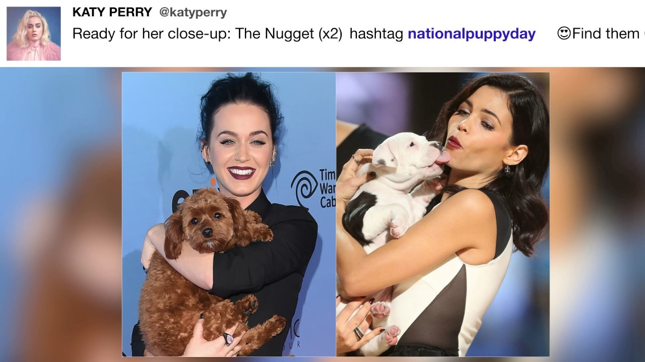 Katyperry Ready For Her Close Up The Nugget Youtube