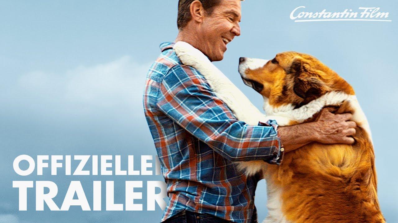 BAILEY - Ein Hund kehrt zurück I Offizieller Trailer