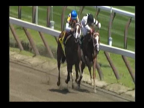 2014 Schuylerville Stakes
